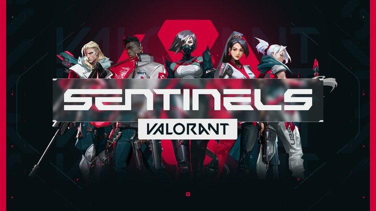 Who is the Best Valorant Team?